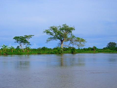 Lake Maracaibo: Earth's Principal Lightning Hotspot